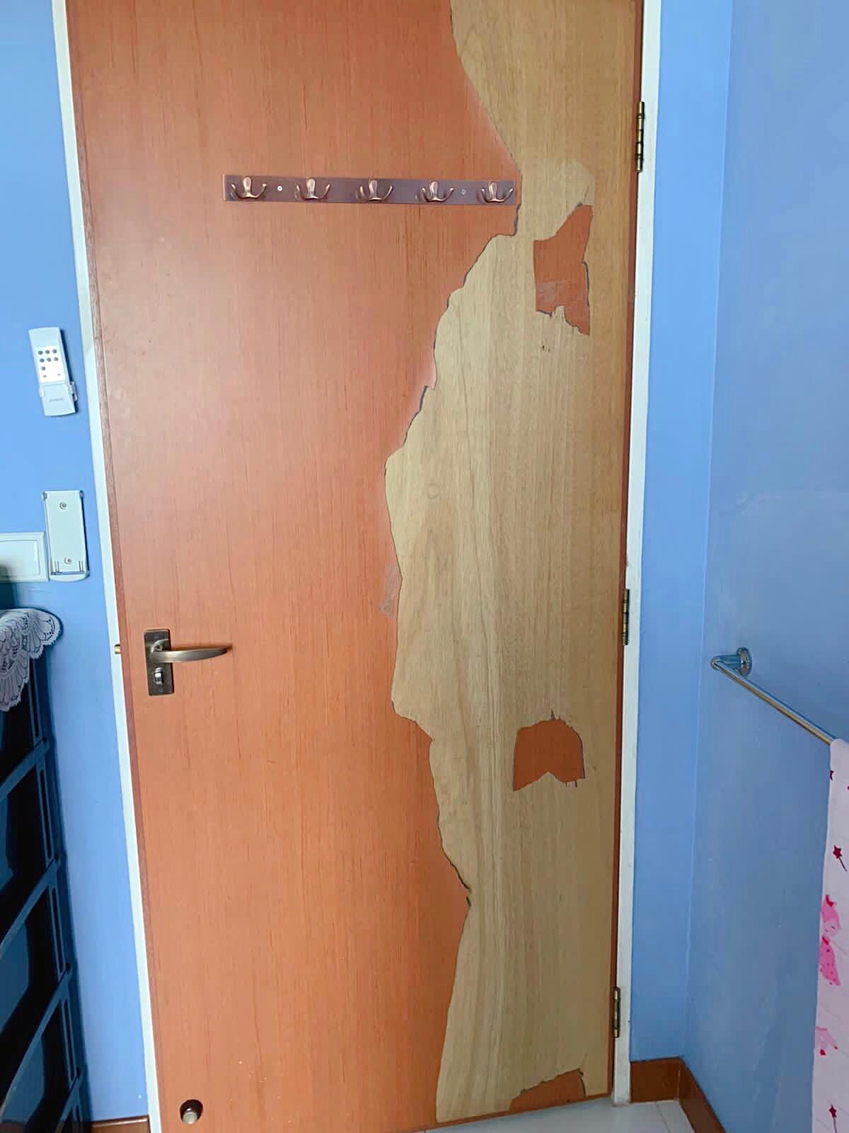 Re-laminate door